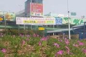 구리농수산물도매시장 봄꽃 식재