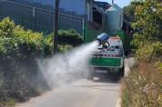 여주시 아프리카돼지열병(ASF) 방역 총력 대응